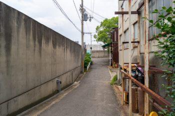 落合上ノ渡を木津川へ